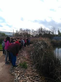 Visitas al Jadín Botánico de Albacete